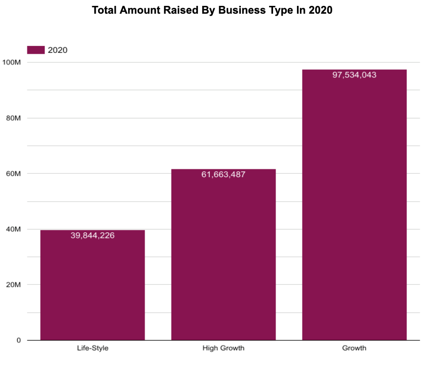 Total Amount Raised by Business Type in 2020